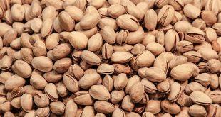 pistacchi valori nutrizionali