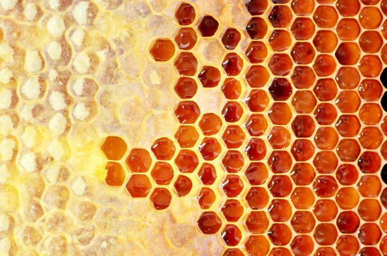 Cera d'api: proprietà e benefici