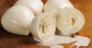 mozzarella-in-gravidanza