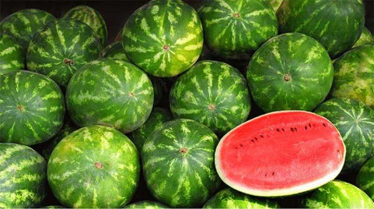 L'anguria fa ingrassare: calorie e valori nutrizionali
